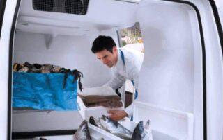 furgo pescado frigorifico